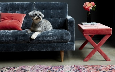 designer furniture brings classic seating styles home