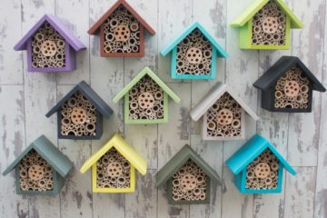 bee houses, give insects holiday home