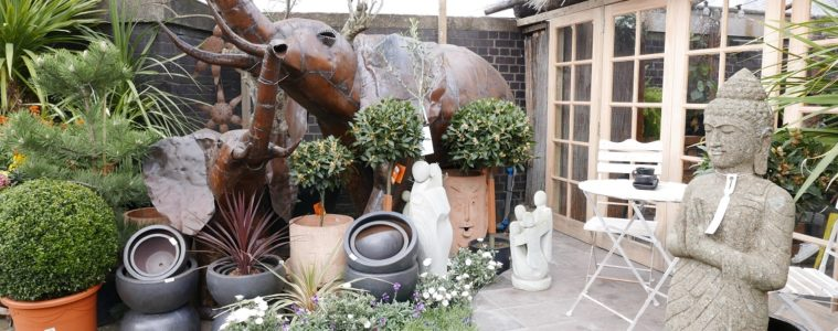the boma garden centre kentish town featured image